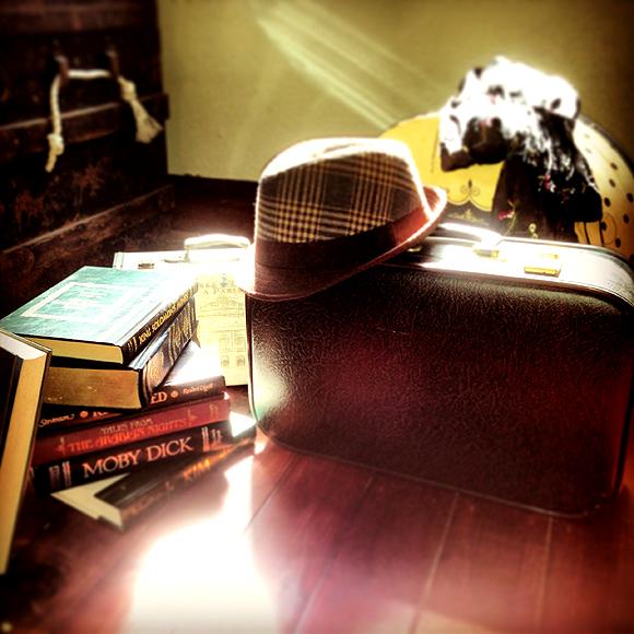 in pursuit of | suitcase