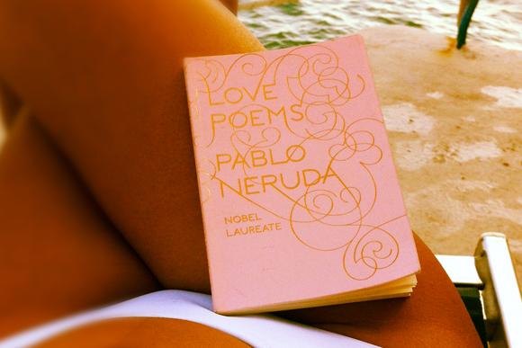 in the pursuit of | Pablo Neruba