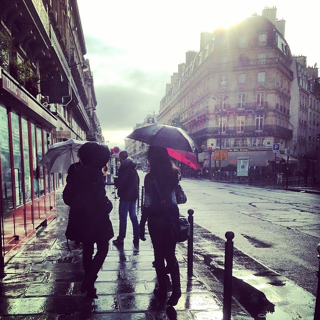in the pursuit of | Paris in the Rain