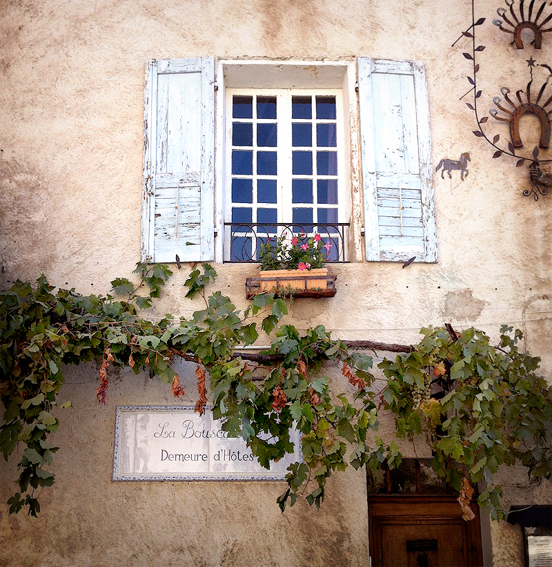 in the pursuit of | Provence